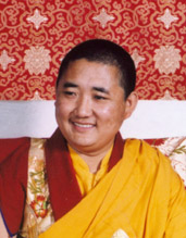 S.E. Namrol Rinpoche