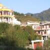 Chamspa Ling