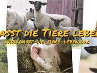 Lasst die Tiere leben